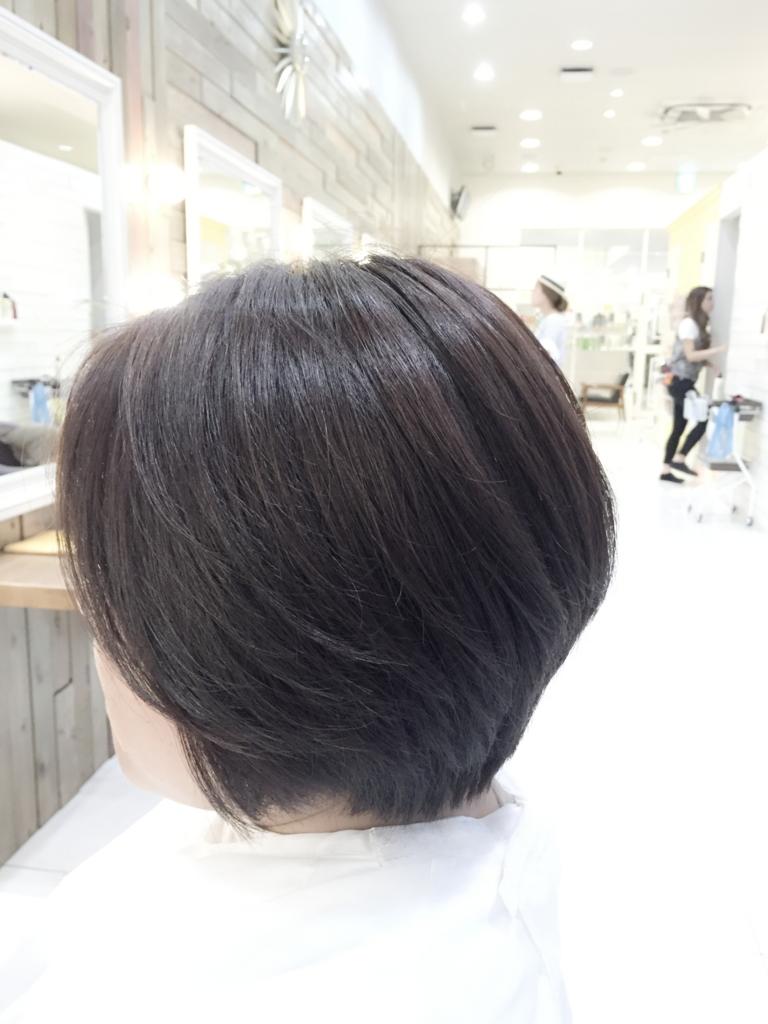 f:id:kenichi6282:20160705143421j:plain