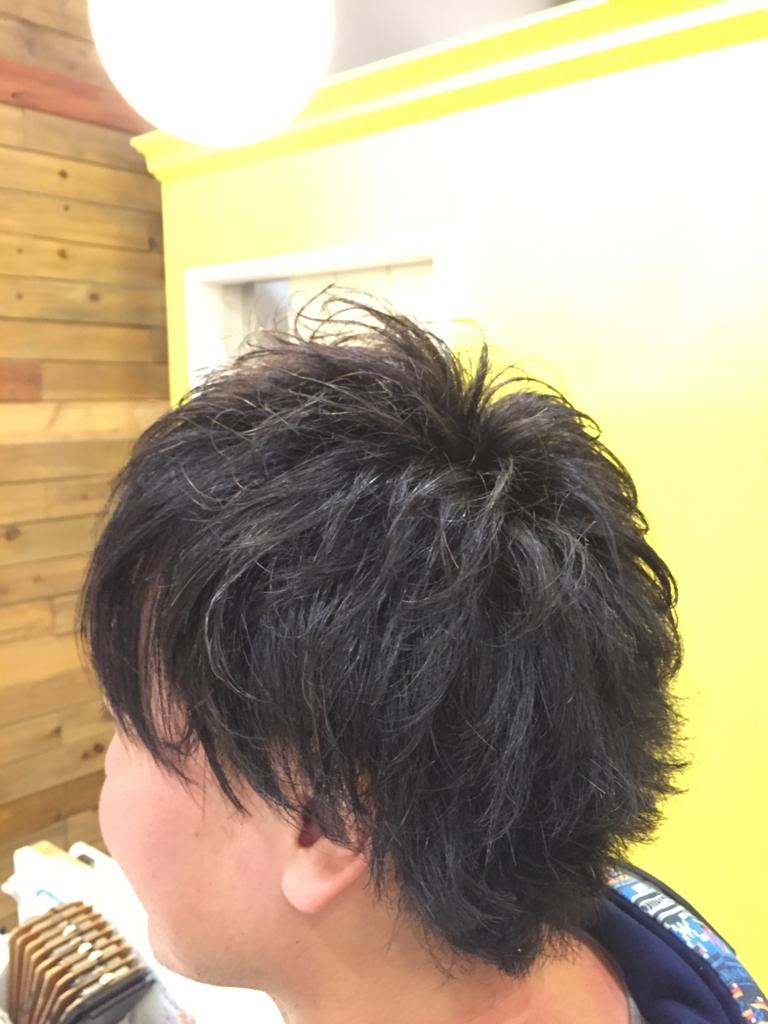 f:id:kenichi6282:20161127232551j:plain