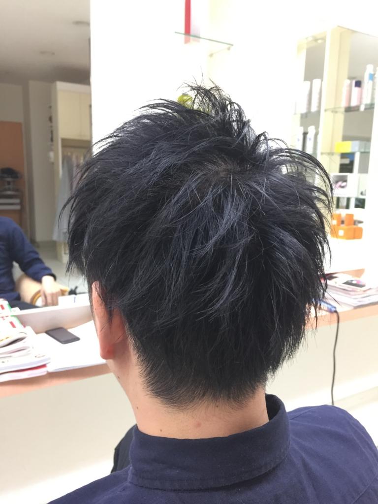 f:id:kenichi6282:20170102192841j:plain