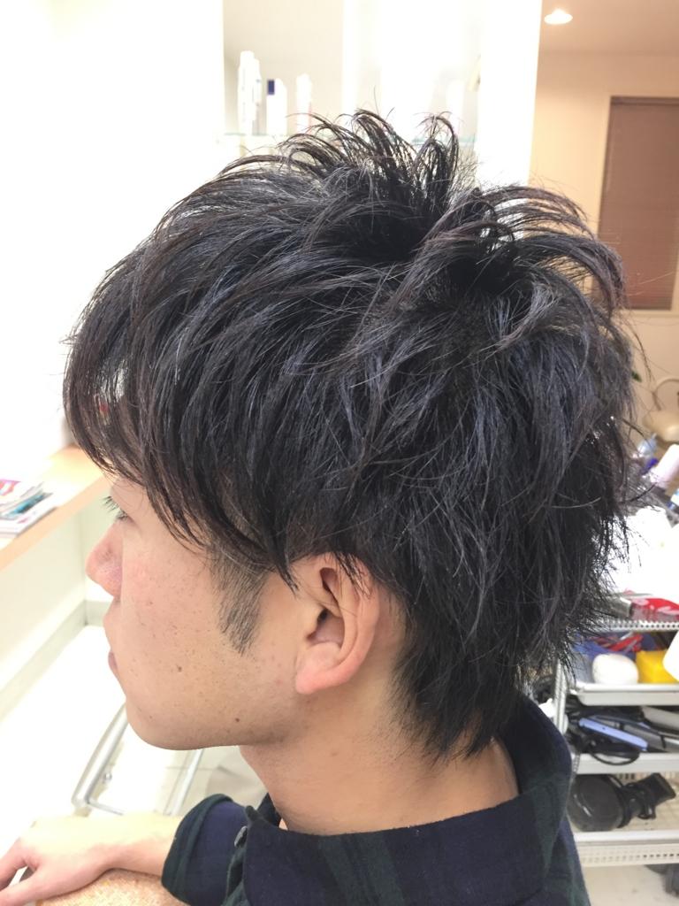 f:id:kenichi6282:20170102193219j:plain