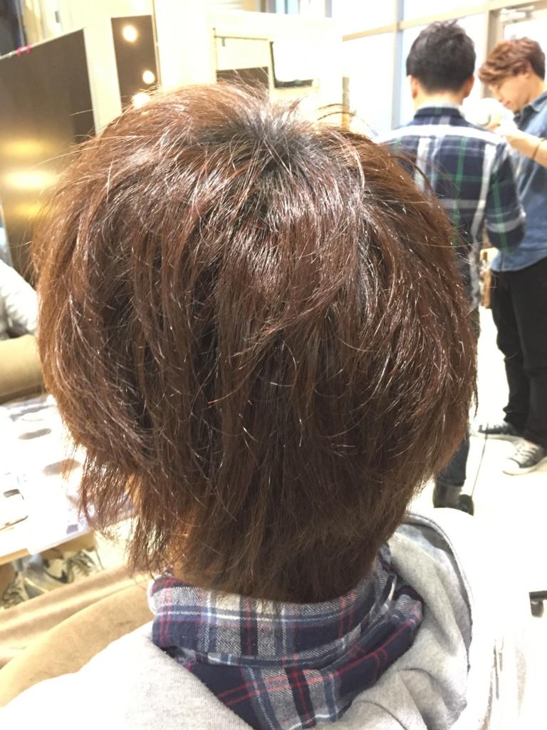 f:id:kenichi6282:20170108230325j:plain