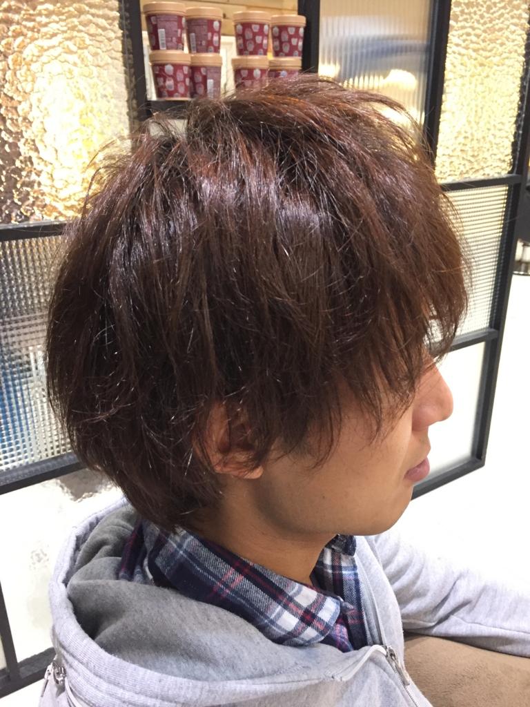 f:id:kenichi6282:20170108230357j:plain