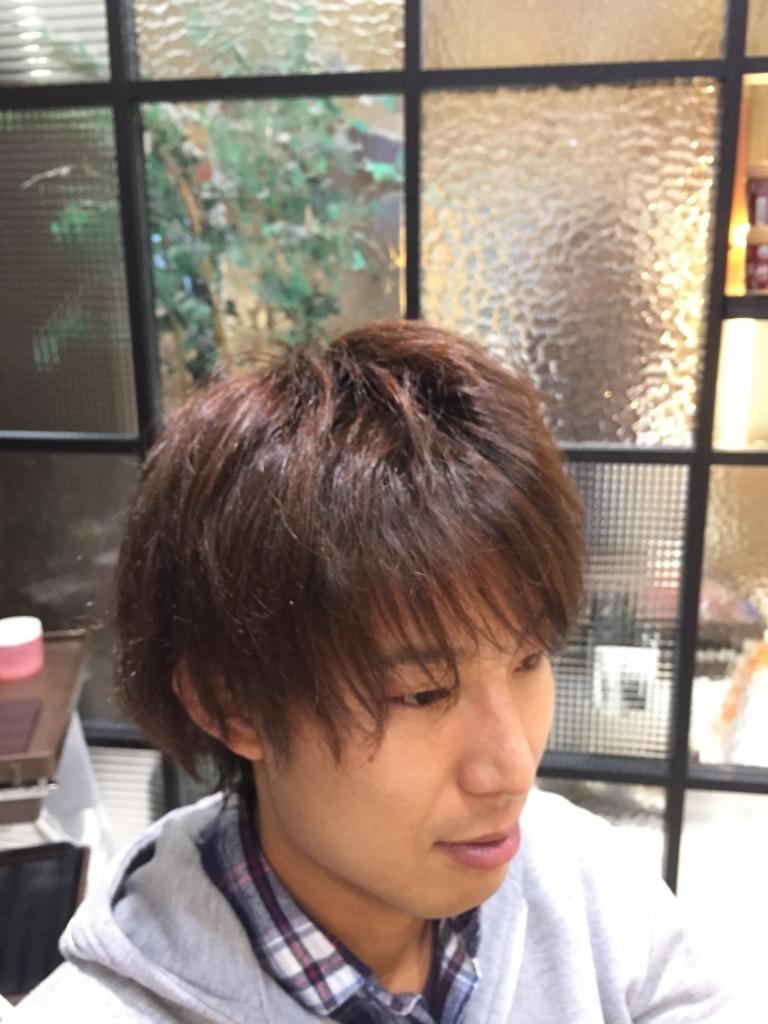 f:id:kenichi6282:20170108230421j:plain