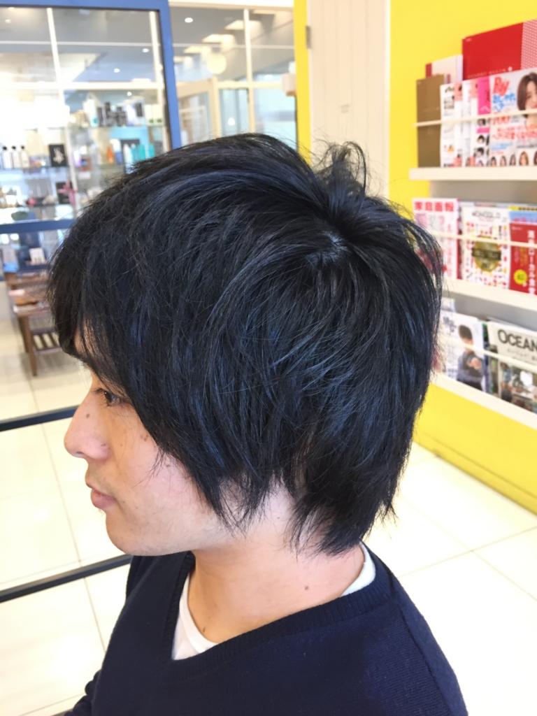 f:id:kenichi6282:20170110225845j:plain