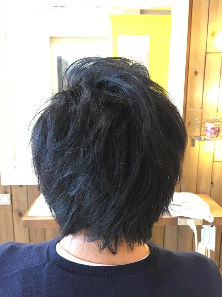 f:id:kenichi6282:20170110225953j:plain