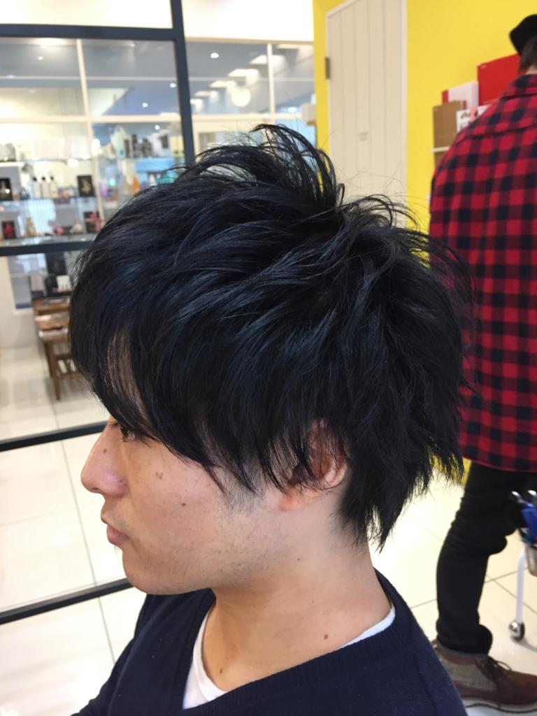 f:id:kenichi6282:20170110231111j:plain