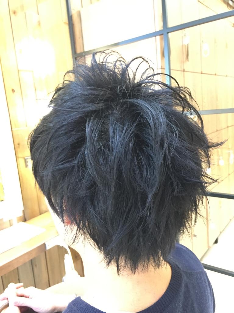 f:id:kenichi6282:20170110231141j:plain