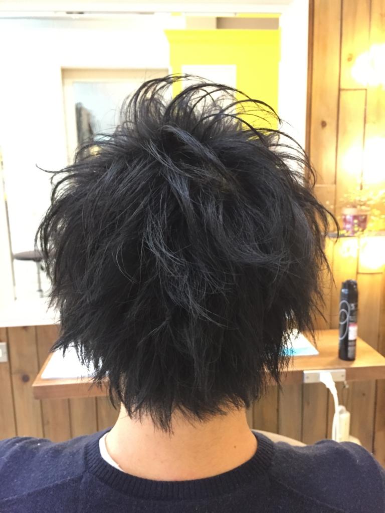 f:id:kenichi6282:20170110231202j:plain