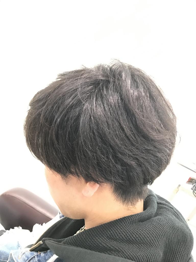 f:id:kenichi6282:20170213175602j:plain