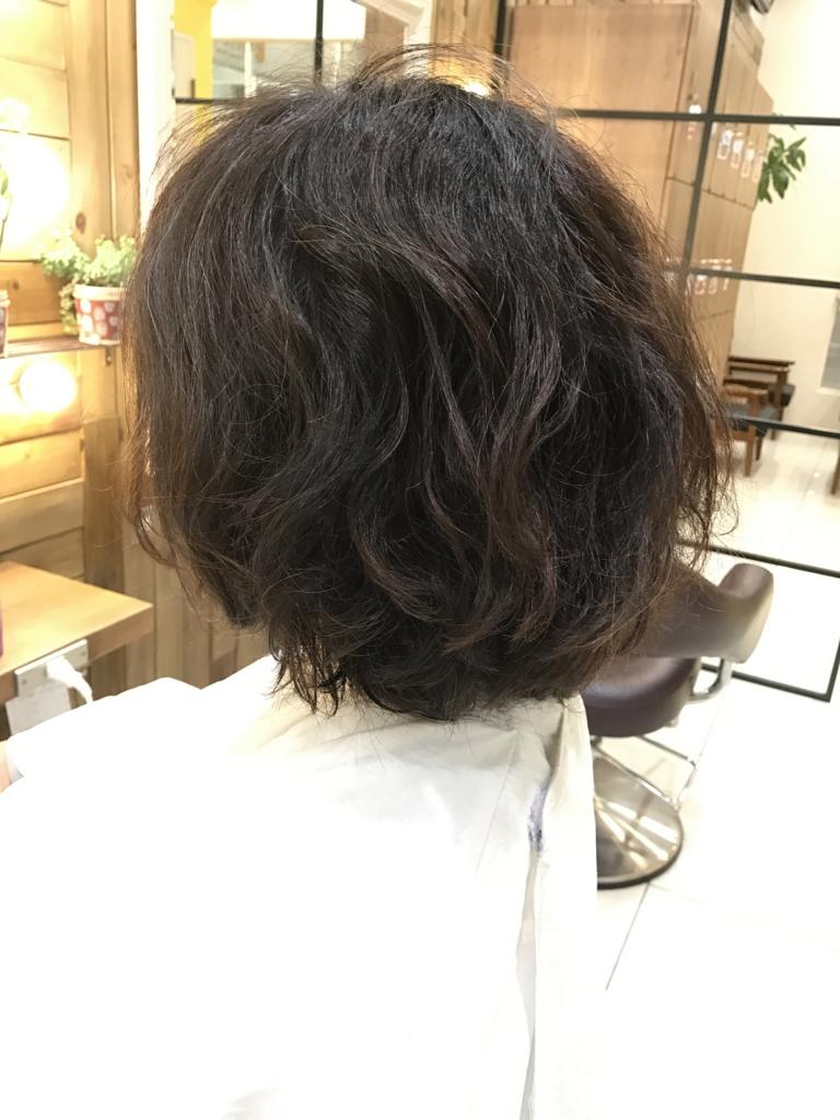 f:id:kenichi6282:20170303224749j:plain