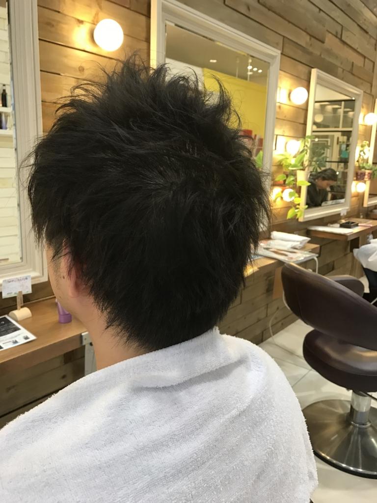 f:id:kenichi6282:20170306204735j:plain