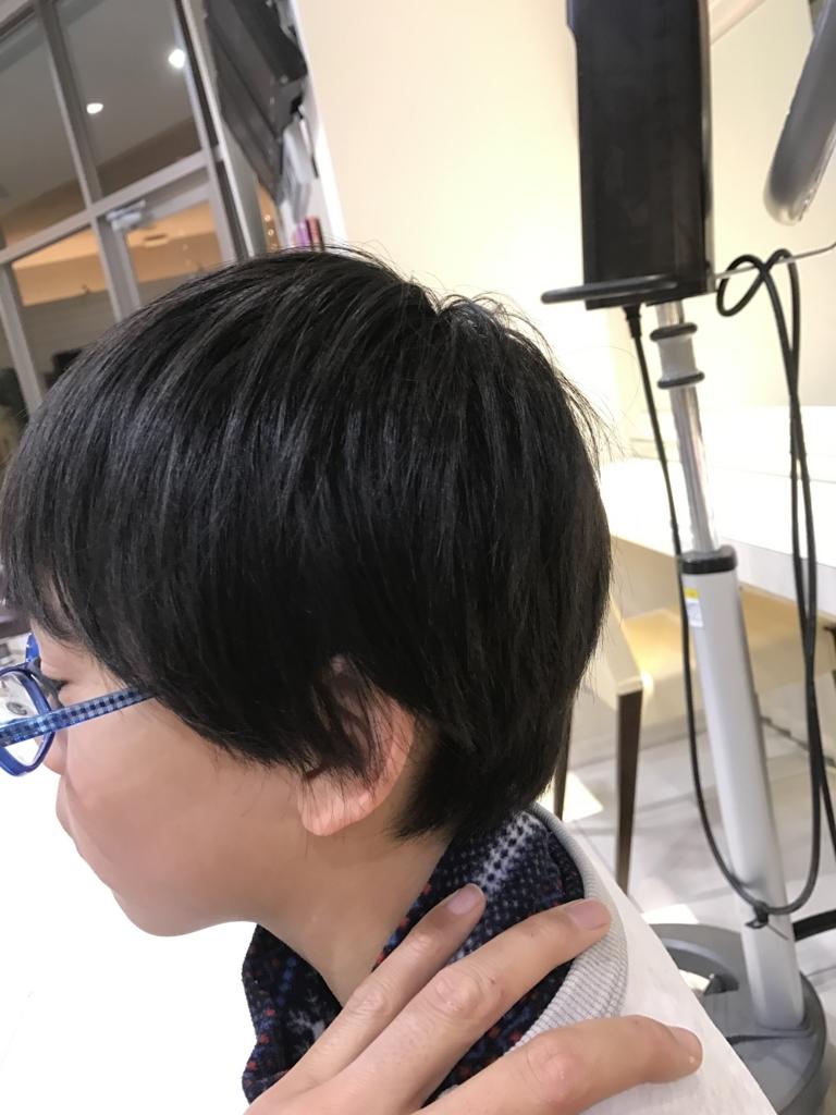f:id:kenichi6282:20170306205950j:plain