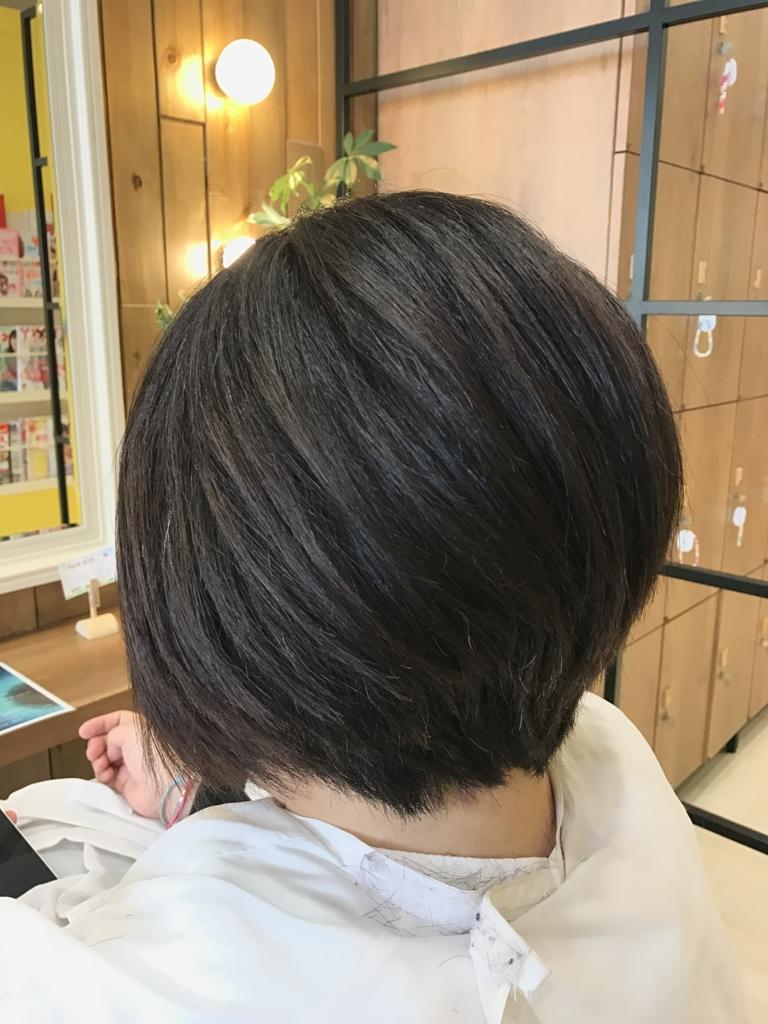f:id:kenichi6282:20170308201824j:plain