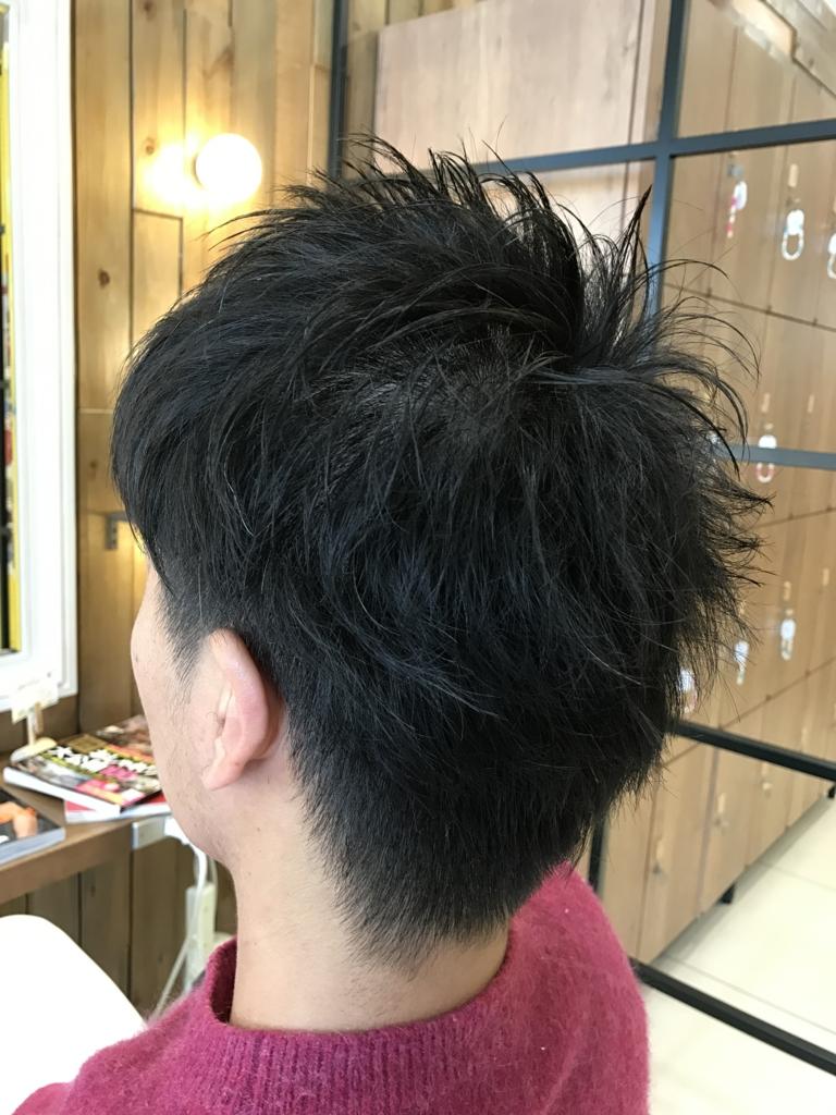 f:id:kenichi6282:20170308204038j:plain