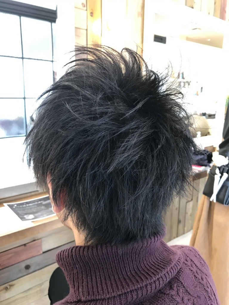 f:id:kenichi6282:20170308205317j:plain