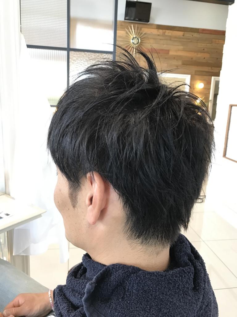 f:id:kenichi6282:20170309223752j:plain