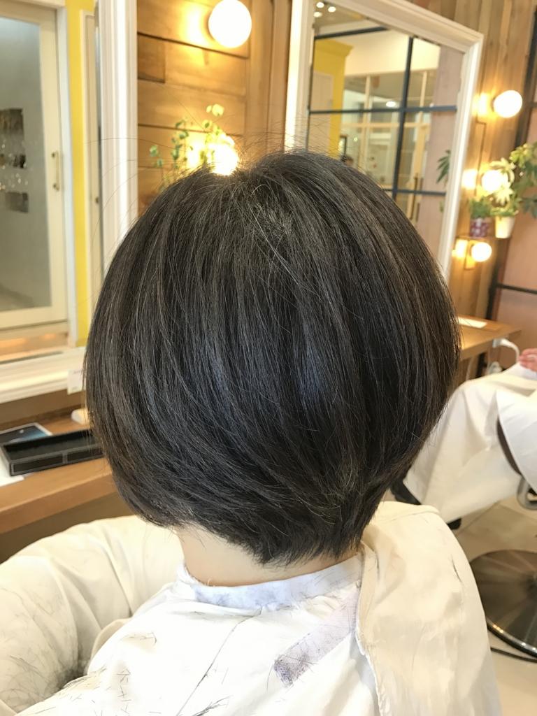 f:id:kenichi6282:20170309224701j:plain
