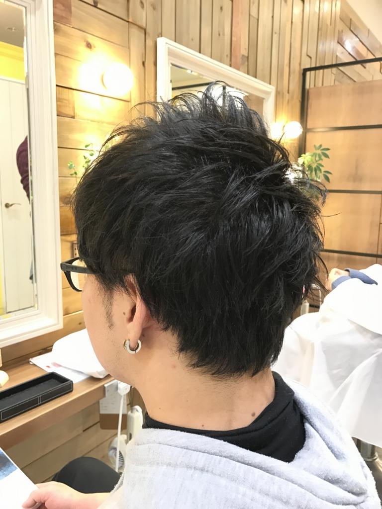 f:id:kenichi6282:20170309230139j:plain