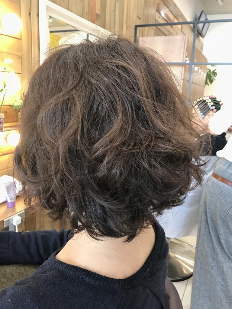 f:id:kenichi6282:20170310224530j:plain