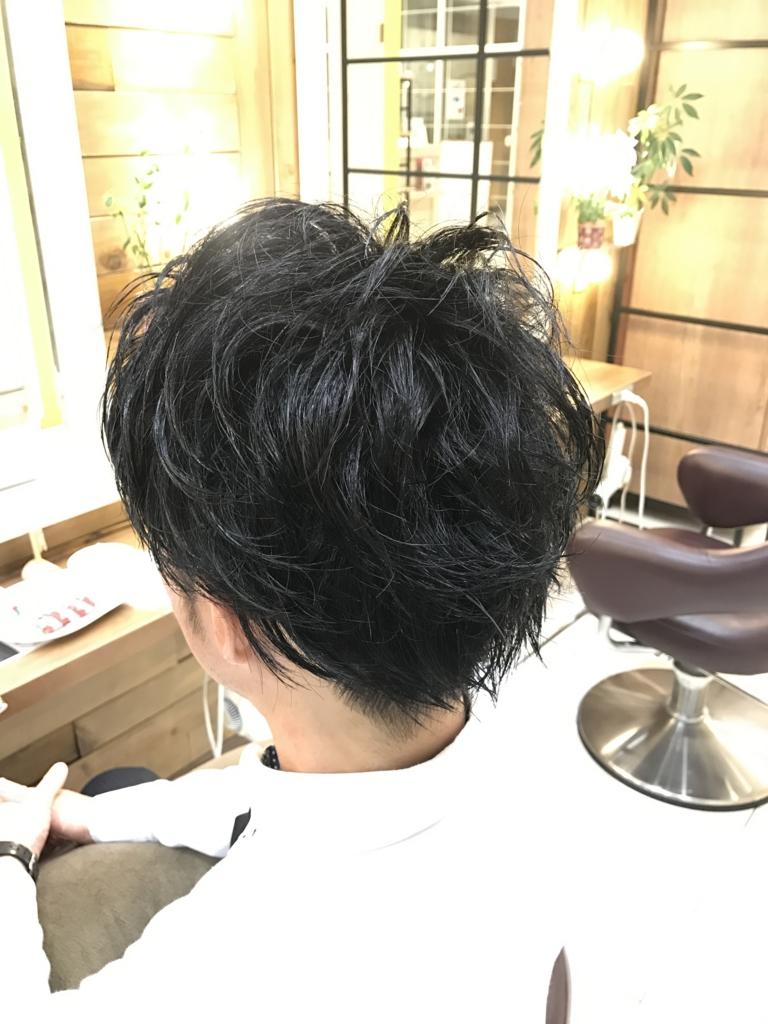f:id:kenichi6282:20170310231620j:plain