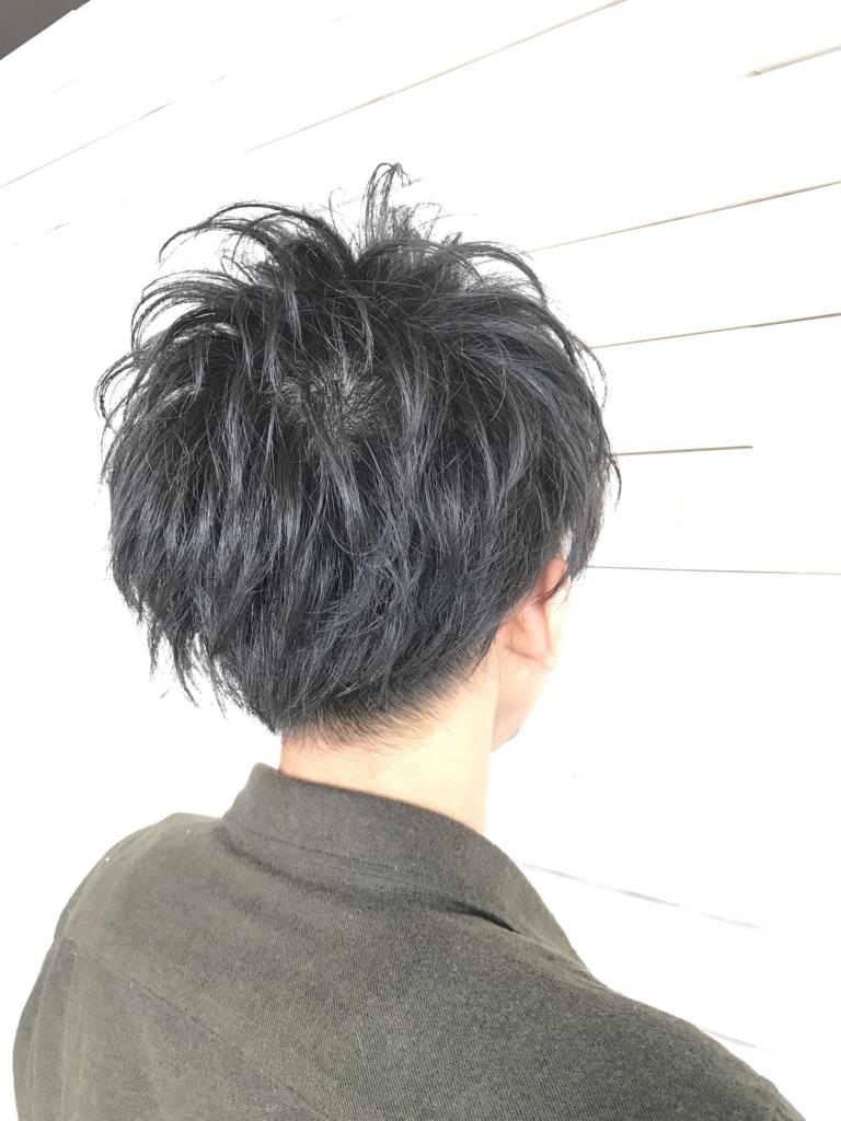 f:id:kenichi6282:20170315211852j:plain