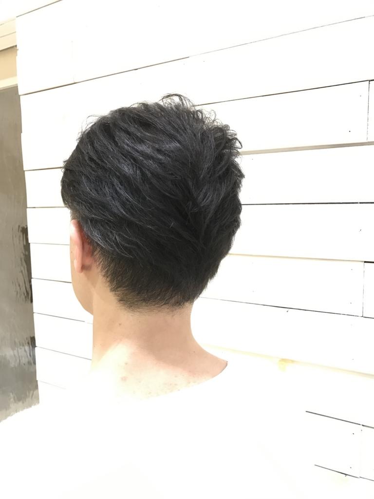 f:id:kenichi6282:20170315213455j:plain