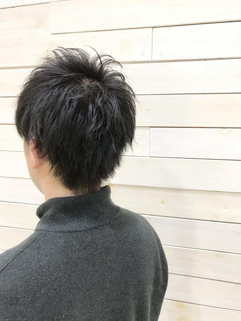f:id:kenichi6282:20170323010825j:plain