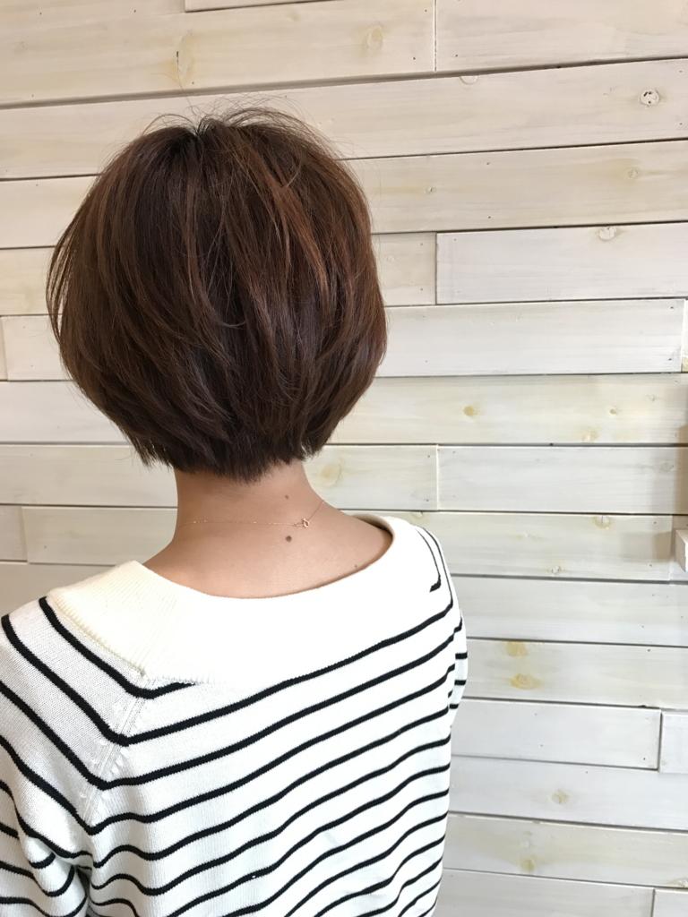 f:id:kenichi6282:20170323011859j:plain