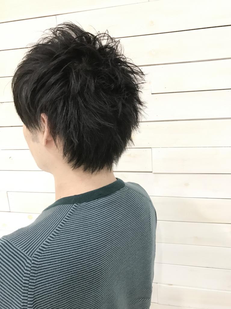 f:id:kenichi6282:20170323205553j:plain