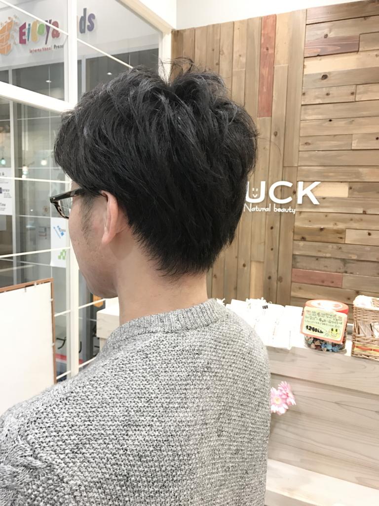f:id:kenichi6282:20170327164009j:plain