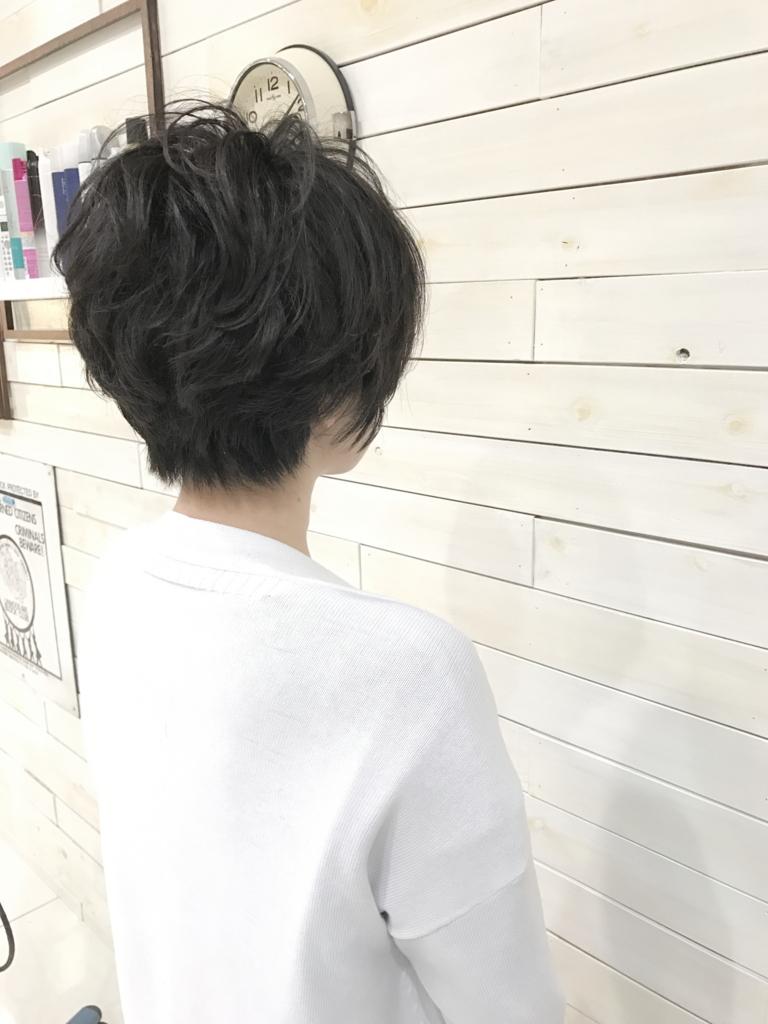f:id:kenichi6282:20170411230044j:plain