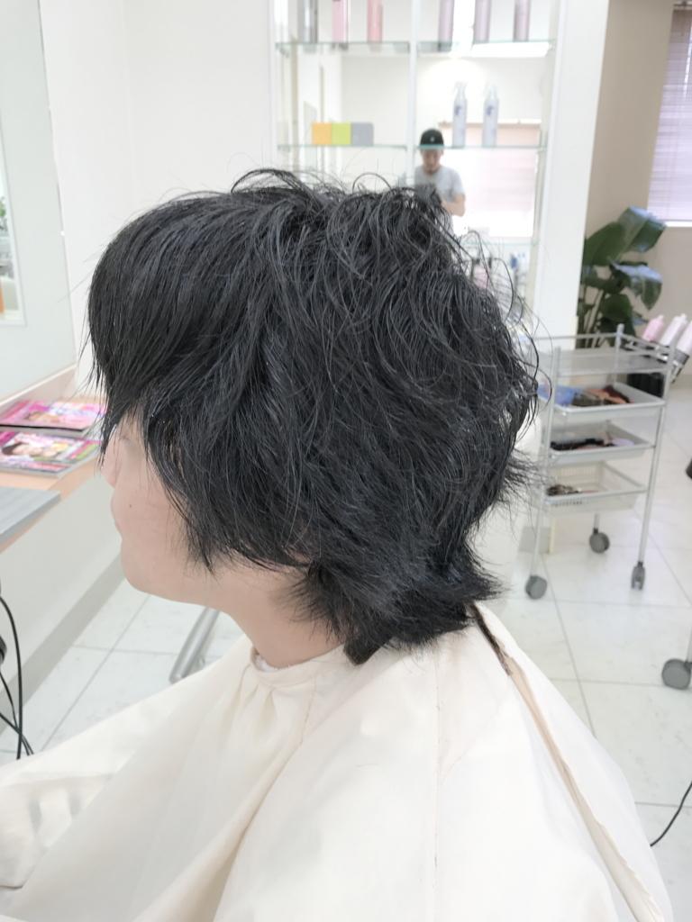 f:id:kenichi6282:20170518215310j:plain