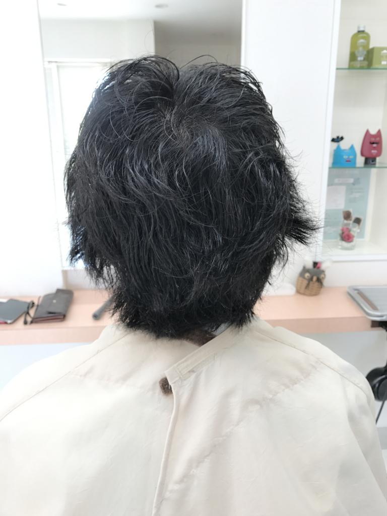 f:id:kenichi6282:20170518215342j:plain