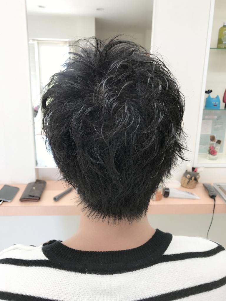 f:id:kenichi6282:20170518224458j:plain