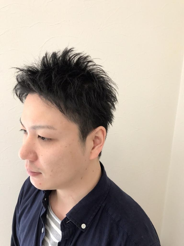 f:id:kenichi6282:20170621172545j:plain