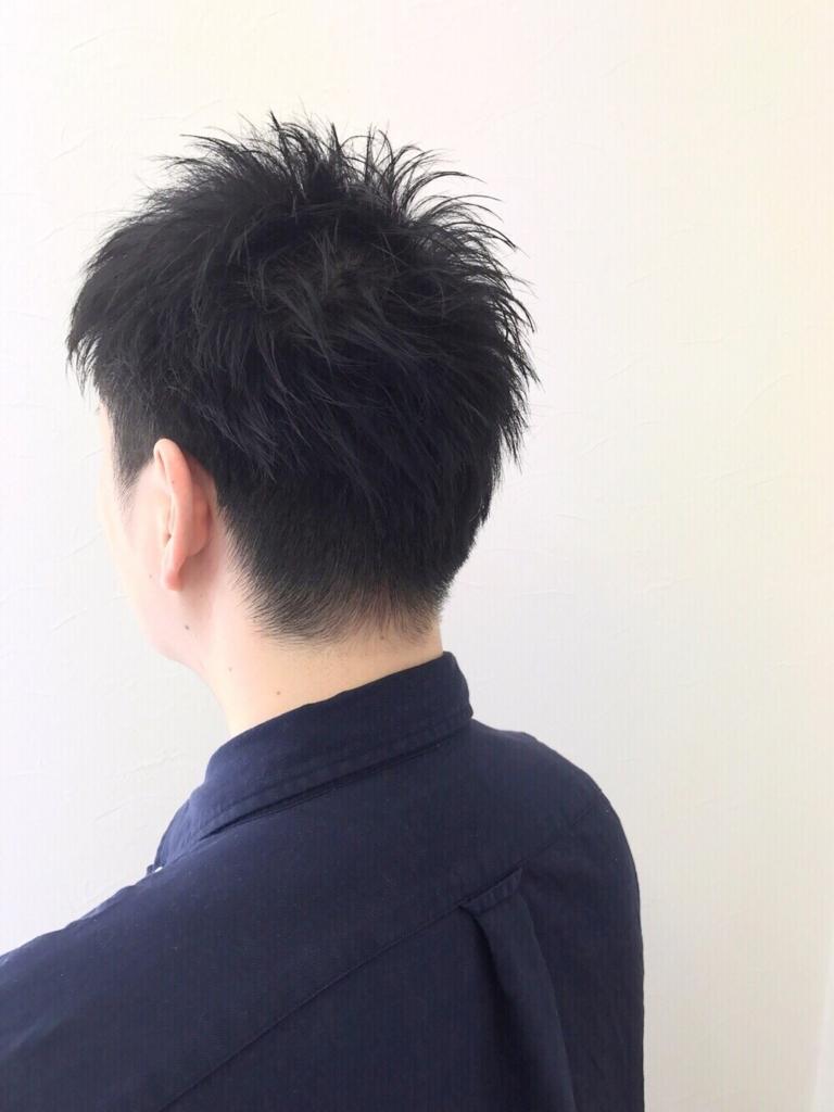 f:id:kenichi6282:20170621172705j:plain