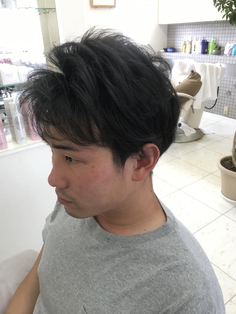 f:id:kenichi6282:20170629223720j:plain