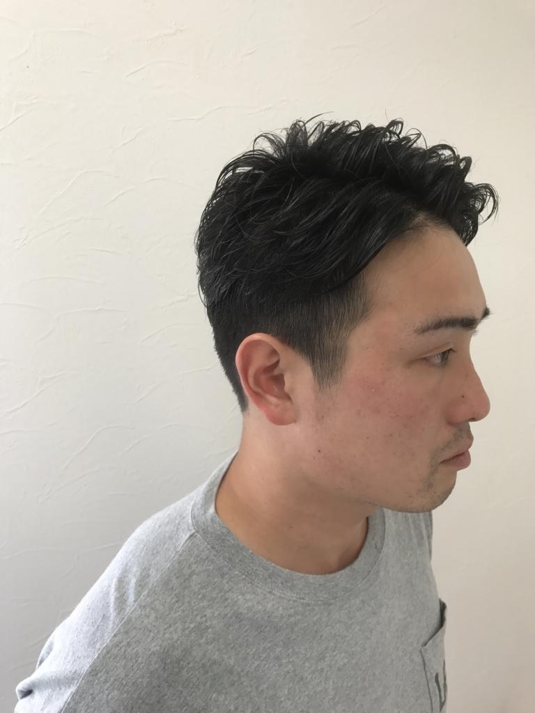 f:id:kenichi6282:20170629225400j:plain