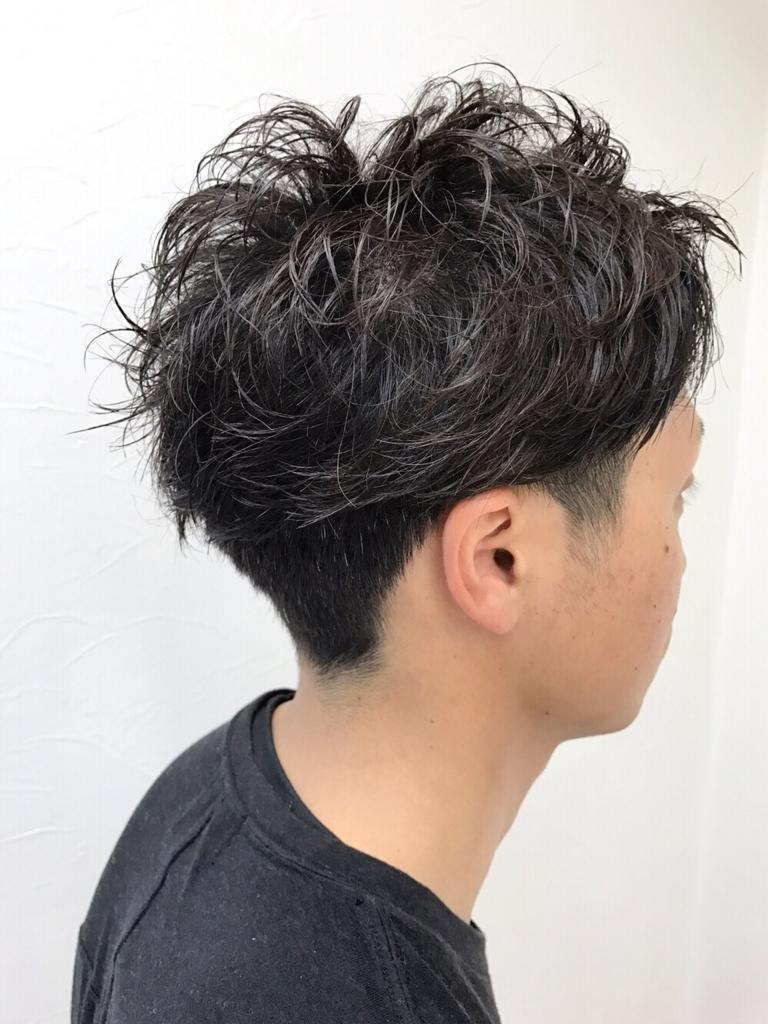 f:id:kenichi6282:20170701192701j:plain