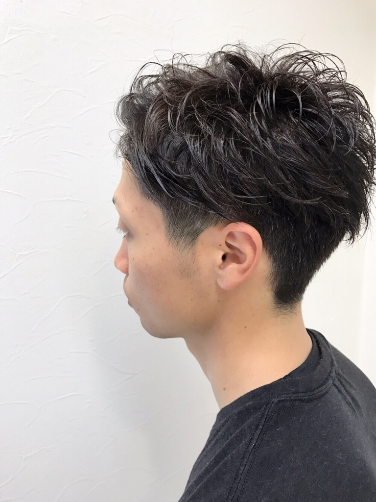 f:id:kenichi6282:20170701192750j:plain