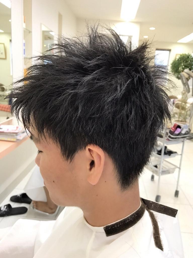 f:id:kenichi6282:20170725185906j:plain