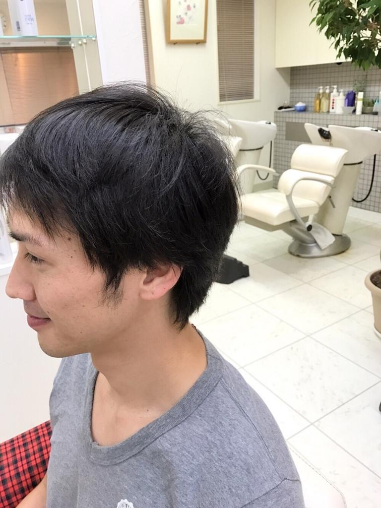f:id:kenichi6282:20170730223604j:plain