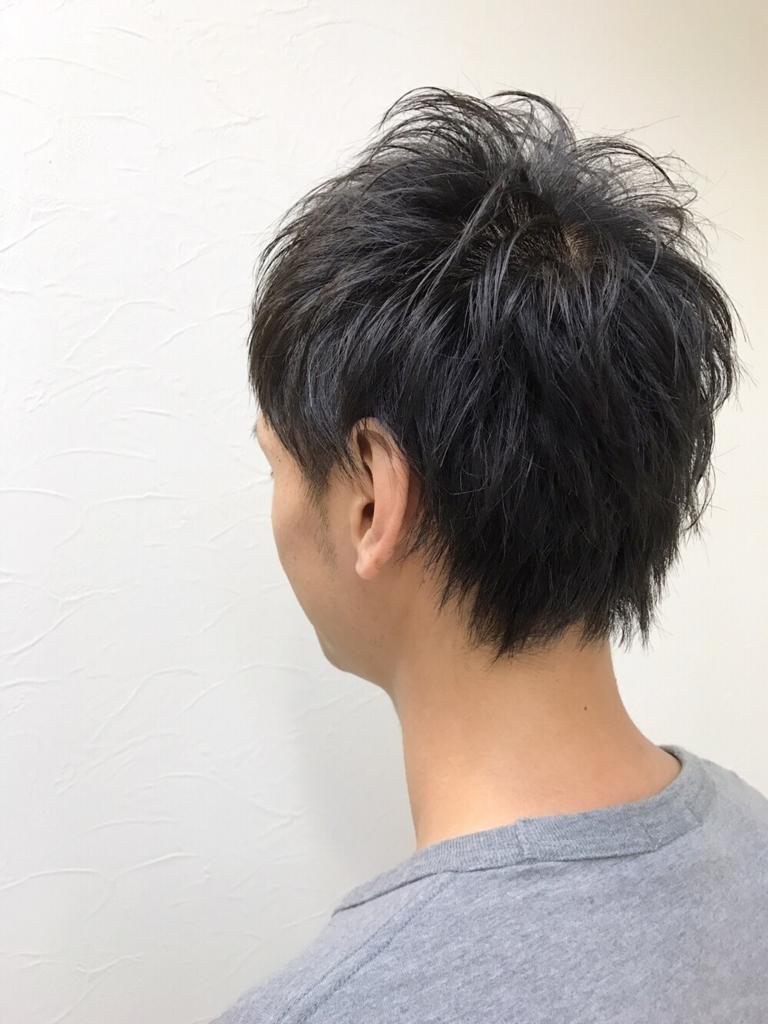 f:id:kenichi6282:20170730225011j:plain