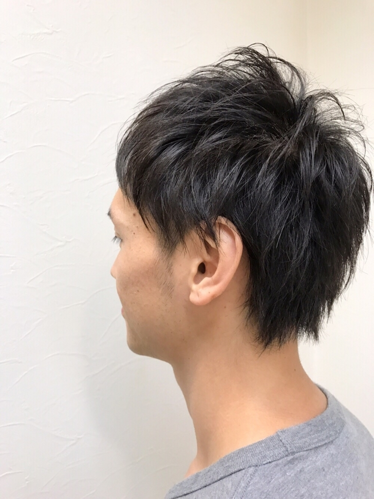 f:id:kenichi6282:20170730225332j:plain