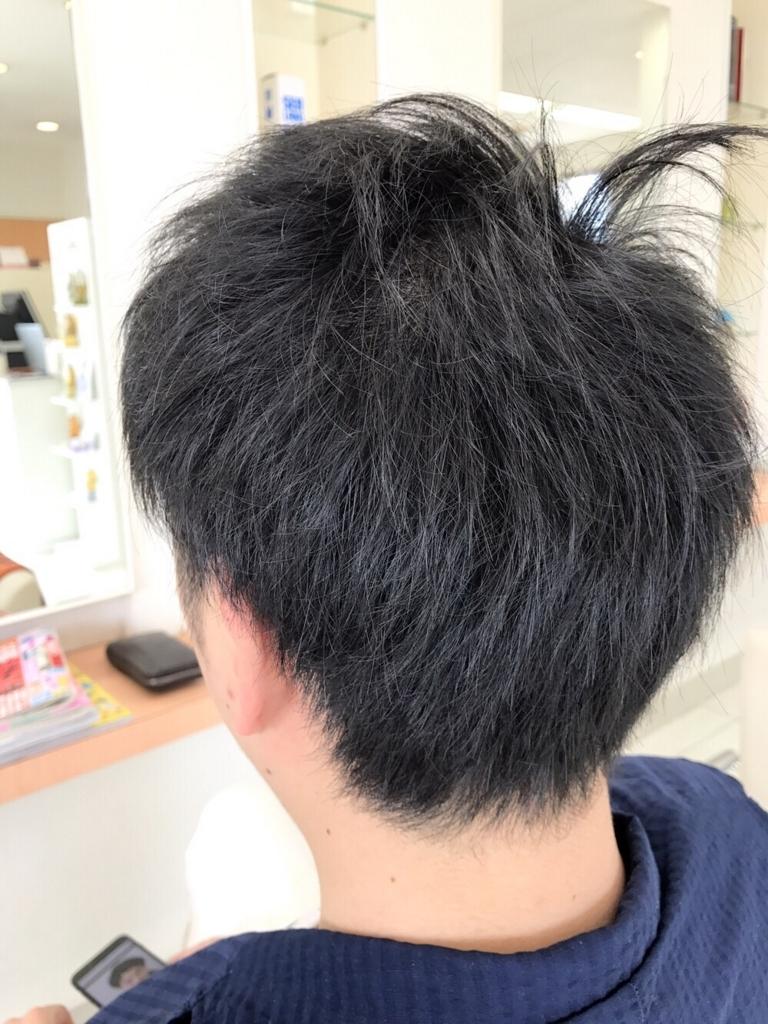 f:id:kenichi6282:20170802152456j:plain