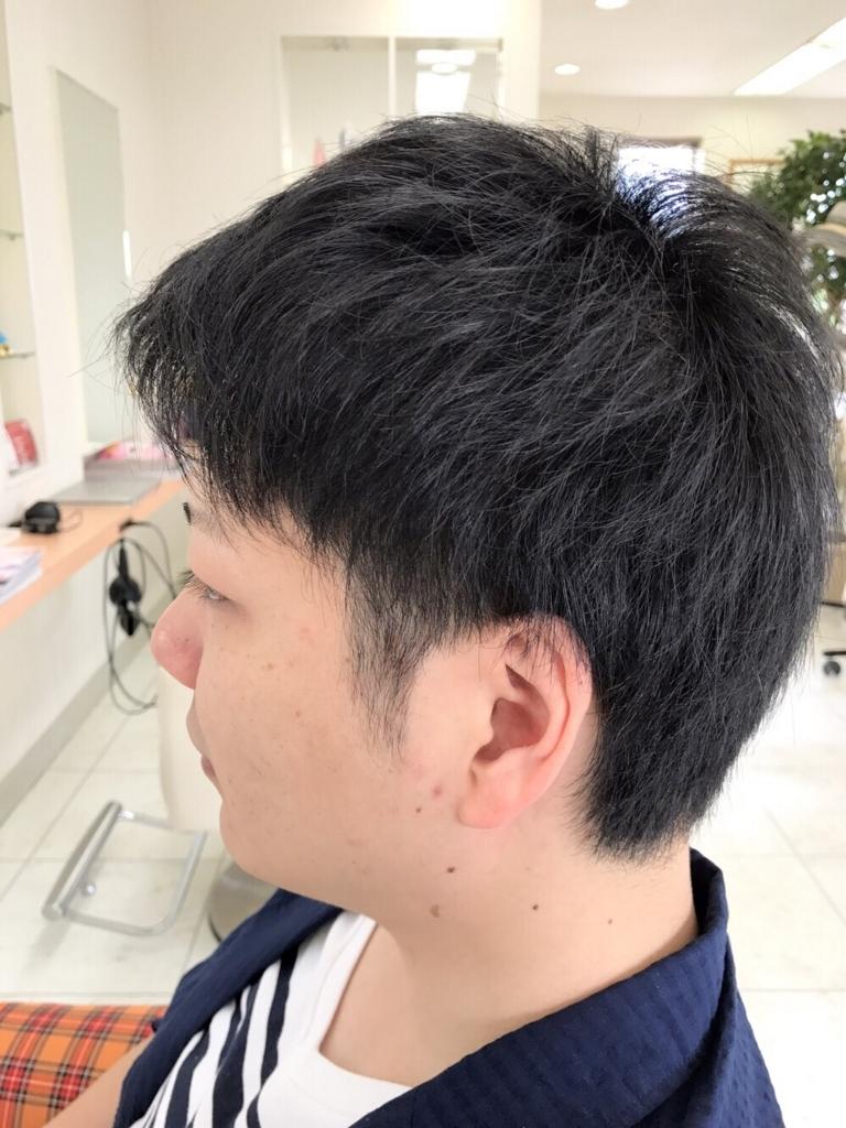 f:id:kenichi6282:20170802152511j:plain