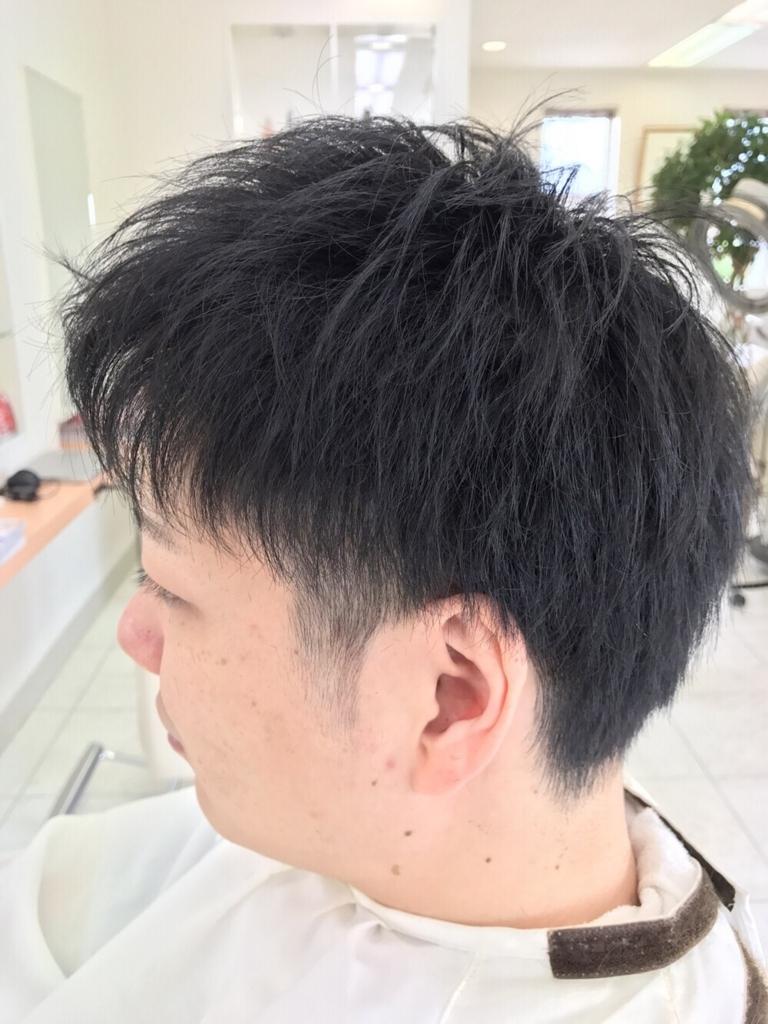 f:id:kenichi6282:20170802152722j:plain