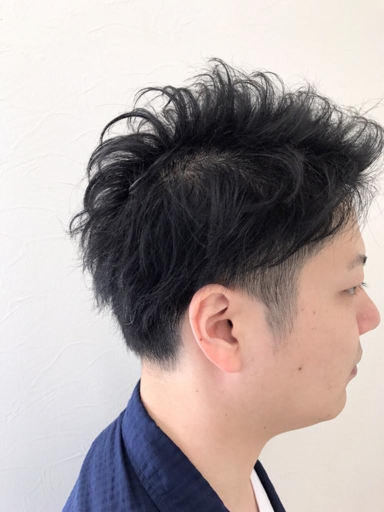 f:id:kenichi6282:20170802155444j:plain
