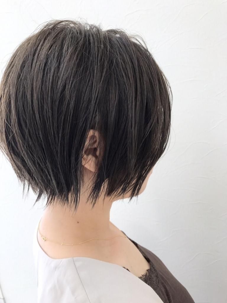 f:id:kenichi6282:20170830151649j:plain
