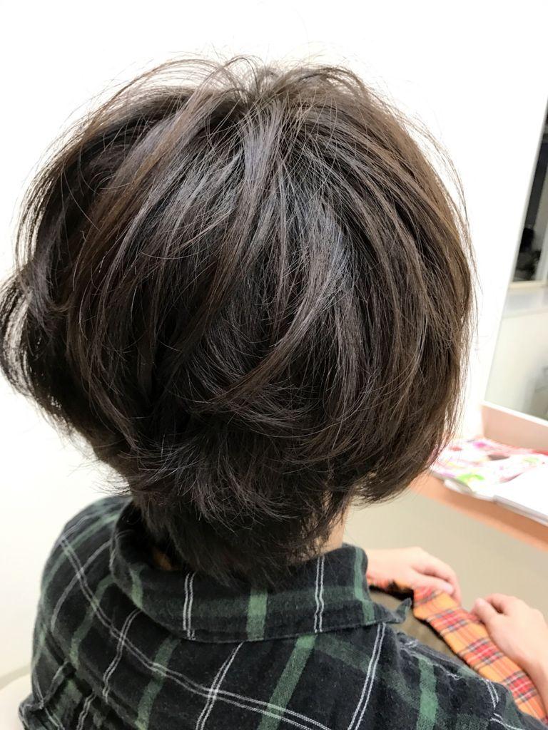 f:id:kenichi6282:20170929211815j:plain